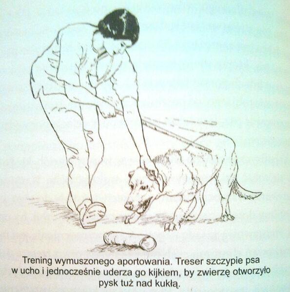 tresura psa ilustracja